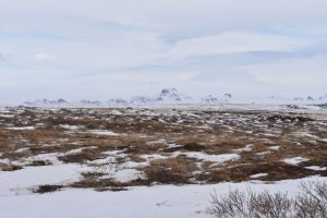 Dónde se ubica el clima de tundra geográficamente -