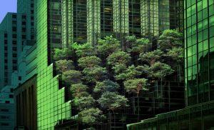 Qué características tiene un jardín vertical