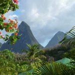 Clima Subtropical: [Características, Flora, Fauna y Adaptabilidad]