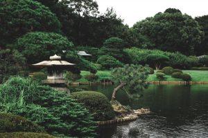 Qué es un jardín japonés