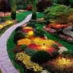 Jardines Verticales: [Características, Plantas, Pasos y Clima]