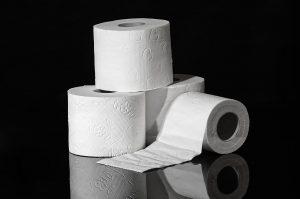 Qué técnicas para reciclar papel en casa podemos aplicar - Rollos de papel higiénico