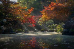 Un jardín Zen o jardín seco -