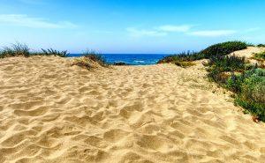 Desiertos costeros