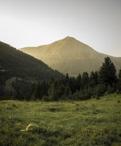 G: Climas de Montaña