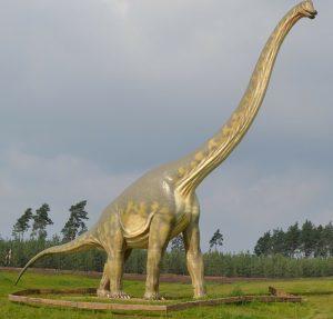 5 animales característicos del Mesozoico - Apatosaurio