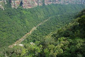 La región amazónica