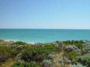 Matorral de la costa del mar Mediterráneo