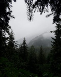 Qué características tiene el clima templado subhúmedo