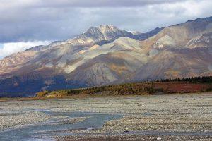 Qué características tiene la tundra