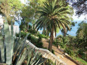 Qué características tiene un jardín mediterráneo -