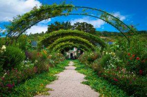 Qué climas son más aptos para un jardín mediterráneo