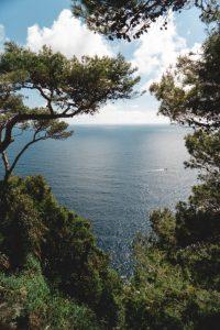 Qué es el clima mediterráneo