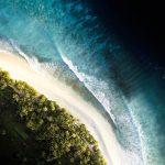 Océano Índico: [Características, Fauna, Flora y Temperatura]