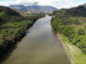 Qué temperatura tiene el bosque amazónico