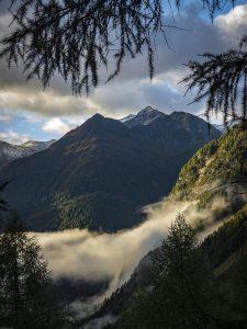 Qué características tiene el clima alpino