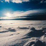 Clima Frío: [Características, Flora, Fauna y Adaptabilidad]