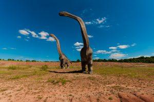 Qué fauna dominó en elMesozoico